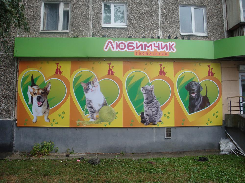 Андрея днем, смешная реклама картинки для зоомагазина